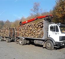 tűzifa szállítás